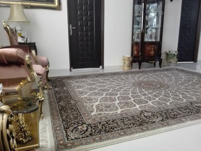 the-difference-700-carpet-with-1000.jpg